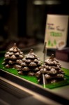 Snow Fallen Chocolate Trees